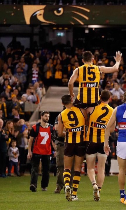 View from the Outer, Round 23, Hawthorn versus Western Bulldogs